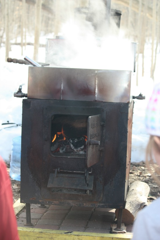 Cooker for making Maple Syrup