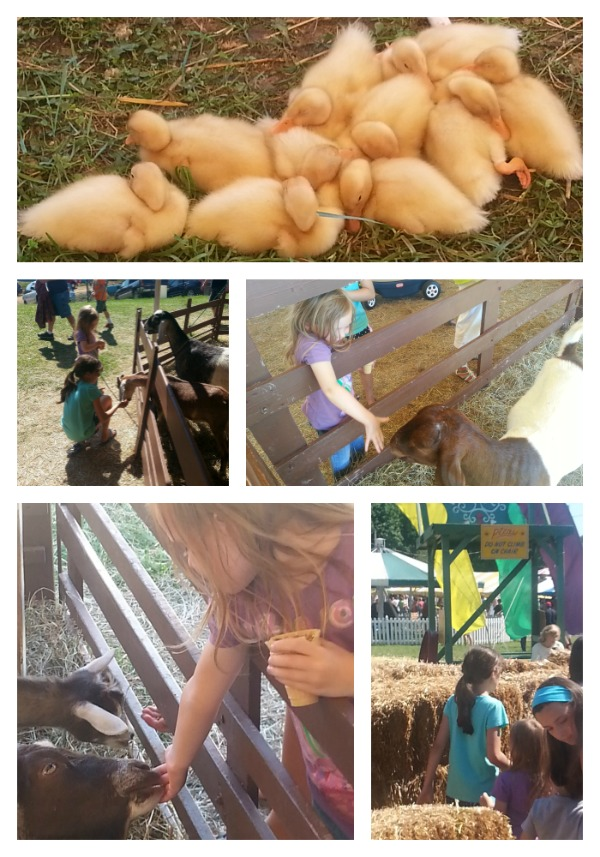 More hands on fun at the Kutztown Folk Festival