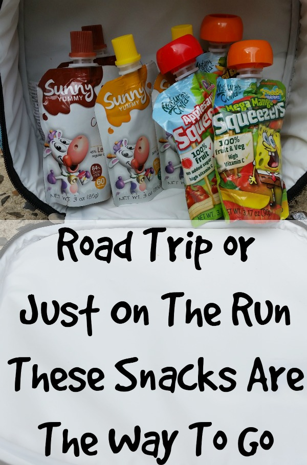 Perfect Road trip Snacks or Snacks on the go
