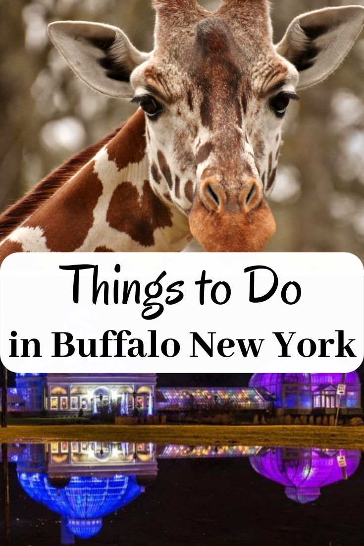 Looking for Things to do in Buffalo New York? Wait until you see this list of things to do. With so many choices, you will never have to wonder what there is to do.