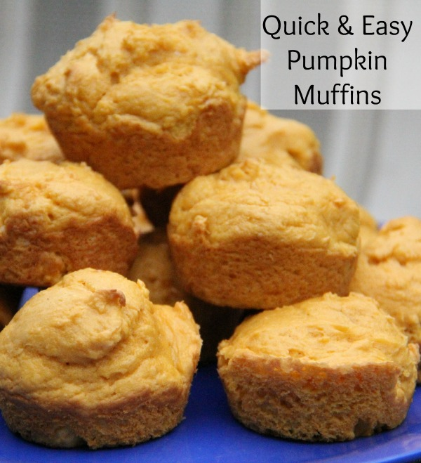 Quick and easy muffins