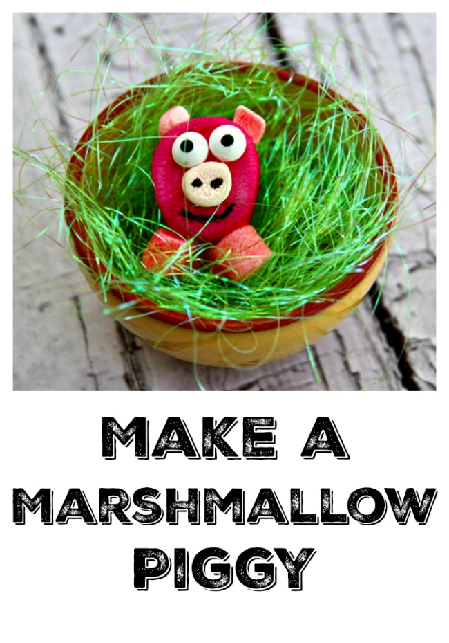Getting Ready for Spring. Want a cute Spring Dessert Idea Make a Marshmallow Piggy